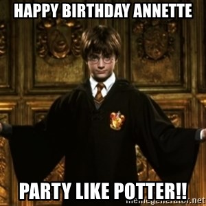 Harry Potter Come At Me Bro - Happy Birthday Annette Party like Potter!!