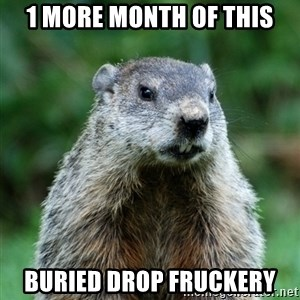 grumpy groundhog - 1 more month of this Buried Drop fruckery