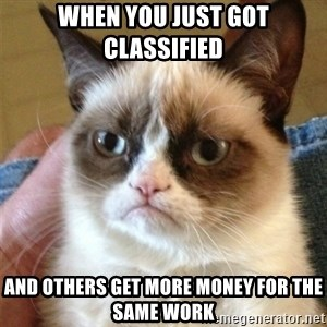 Grumpy Cat  - when you just got classified and others get more money for the same work