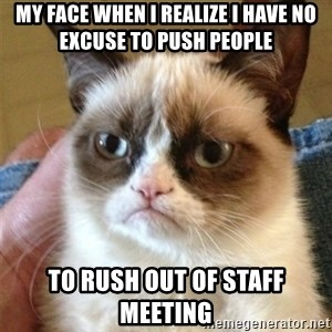 Grumpy Cat  - My face when I realize I have no excuse to push people to rush out of Staff Meeting
