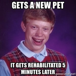 Bad Luck Brian - Gets a new pet it gets rehabilitated 5 minutes later