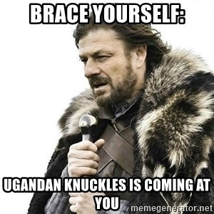 Brace Yourself Winter is Coming. - Brace Yourself: Ugandan Knuckles is coming at you