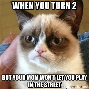 Grumpy Cat  - When you turn 2 but your mom won't let you play in the street