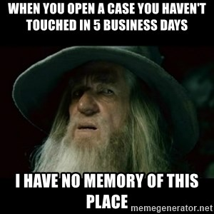 no memory gandalf - When you open a case you haven't touched in 5 business days I have no memory of this place