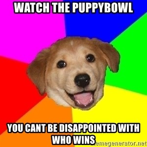 Advice Dog - Watch the puppybowl you cant be disappointed with who wins