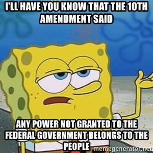 I'll have you know Spongebob - i'll have you know that the 1oth amendment said any power not granted to the federal government belongs to the people