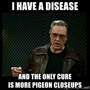 Christopher Walken Cowbell - I have a disease and the only cure                         is more pigeon closeups