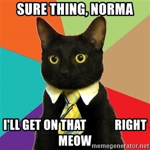 Business Cat - Sure thing, Norma I'll get on that            right meow