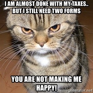 angry cat 2 - I AM ALMOST DONE WITH MY TAXES.. BUT I STILL NEED TWO FORMS YOU ARE NOT MAKING ME HAPPY!