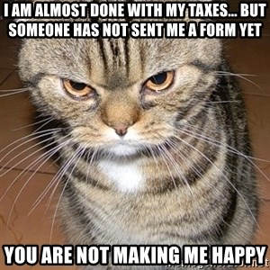 angry cat 2 - I AM ALMOST DONE WITH MY TAXES... BUT SOMEONE HAS NOT SENT ME A FORM YET YOU ARE NOT MAKING ME HAPPY