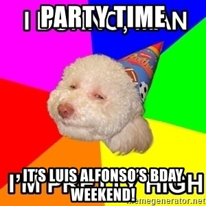 Stoned Birthday Dog - Party time It's Luis Alfonso's Bday weekend!