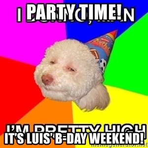 Stoned Birthday Dog - Party Time! It's Luis' B-day weekend!