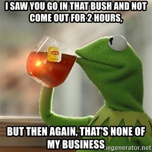 Kermit The Frog Drinking Tea - I SAW YOU GO IN THAT BUSH AND NOT COME OUT FOR 2 HOURS, BUT THEN AGAIN, THAT'S NONE OF MY BUSINESS