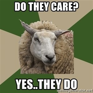 Sociology Student Sheep - Do they care? yes..they do