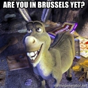 Donkey Shrek - Are you in Brussels yet?