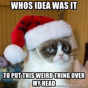 Grumpy Cat Santa Hat - Whos idea was it To put this weird thing over My head