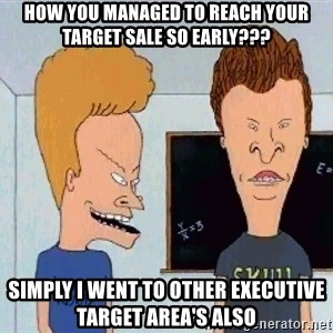 Beavis and butthead - How you managed to reach your target sale so early??? Simply i went to other executive target area's also