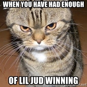 angry cat 2 - when you have had enough  of Lil jud winning