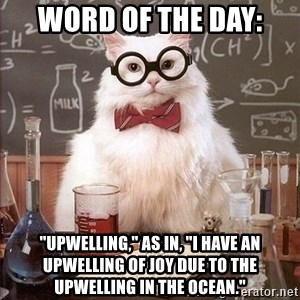 """Chemistry Cat - Word of the Day: """"Upwelling,"""" as in, """"I have an upwelling of joy due to the upwelling in the ocean."""""""