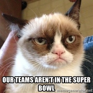 Grumpy Cat 2 - Our teams aren't in the super bowl