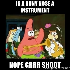Patrick Star Instrument - is a runy nose a instrument nope grrr shoot