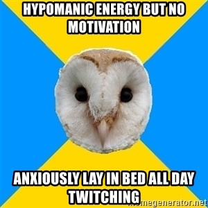Bipolar Owl - Hypomanic energy but no motivation Anxiously lay in bed all day twitching