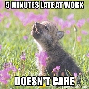 Baby Insanity Wolf - 5 minutes late at work Doesn't care