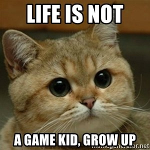 Do you think this is a motherfucking game? - life is not  a game kid, grow up