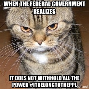 angry cat 2 - when the Federal Government realizes it does not withhold all the power #itbelongtotheppl