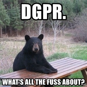 Patient Bear - DGPR.   What's all the fuss about?