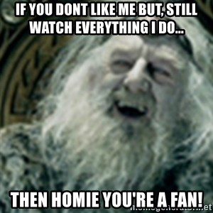 you have no power here - If you dont like me but, Still watch everything I do... Then Homie you're a fan!