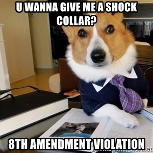 Dog Lawyer - u wanna give me a shock collar? 8th amendment violation