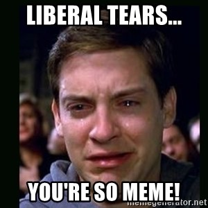 crying peter parker - Liberal Tears... You're so Meme!