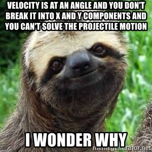 Sarcastic Sloth - velocity is at an angle and you don't break it into x and y components and you can't solve the projectile motion i wonder why