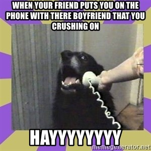 Yes, this is dog! - When your friend puts you on the phone with there boyfriend that you crushing on Hayyyyyyyy