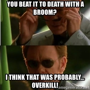 Csi - You beat it to death with a broom?  I think that was probably... overkill!