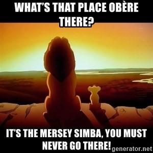 Simba - What's that place obère there? It's the Mersey Simba, you must never go there!