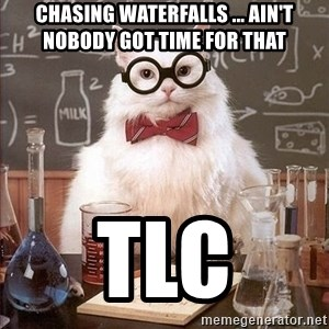 Chemistry Cat - Chasing Waterfalls ... ain't nobody got time for that TLC