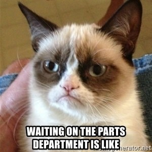 Grumpy Cat  - Waiting on the parts department is like
