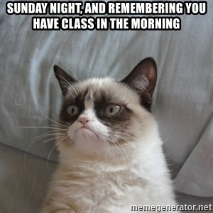 Grumpy cat good - sunday night, and remembering you have class in the morning