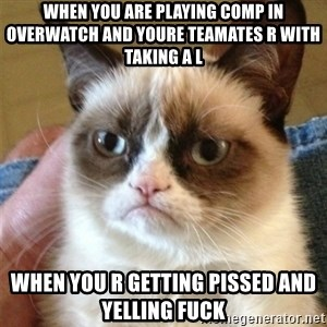 Grumpy Cat  - when you are playing comp in overwatch and youre teamates r with taking a L  When you r getting pissed and yelling Fuck