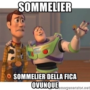 Toy story - SOMMELIER SOMMELIER DELLA FICA OVUNQUE