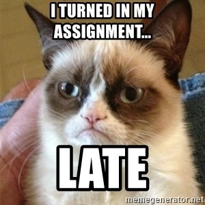 Grumpy Cat  - I turned in my assignment... late