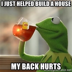 Kermit The Frog Drinking Tea - I just helped build a house My back hurts