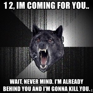 Insanity Wolf - 1 2, im coming for you.. Wait, never mind. I'm already behind you and I'm gonna kill you.