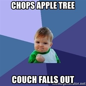 Success Kid - chops apple tree couch falls out