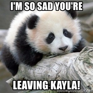 sad panda - I'M SO SAD YOU'RE LEAVING KAYLA!