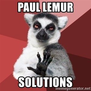 Chill Out Lemur - Paul Lemur Solutions