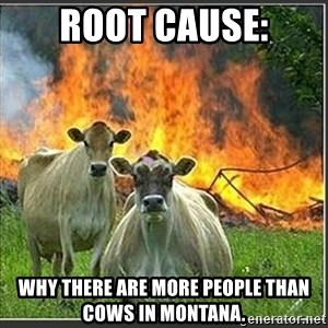 Evil Cows - Root Cause: Why there are more people than cows in montana.