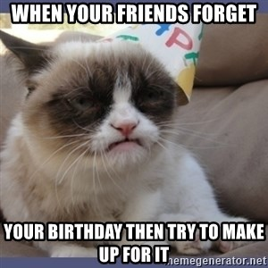 Birthday Grumpy Cat - When your friends forget your birthday then try to make up for it